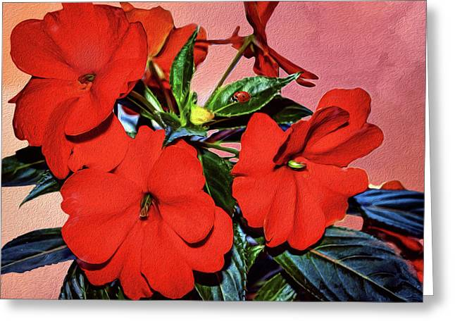 Impatience With Ladybug Greeting Card by Diane Schuster