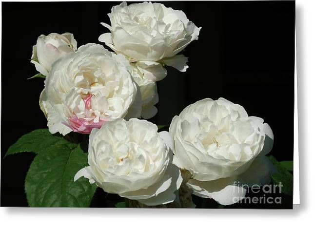 Greeting Card featuring the photograph Imperfection by Victor K