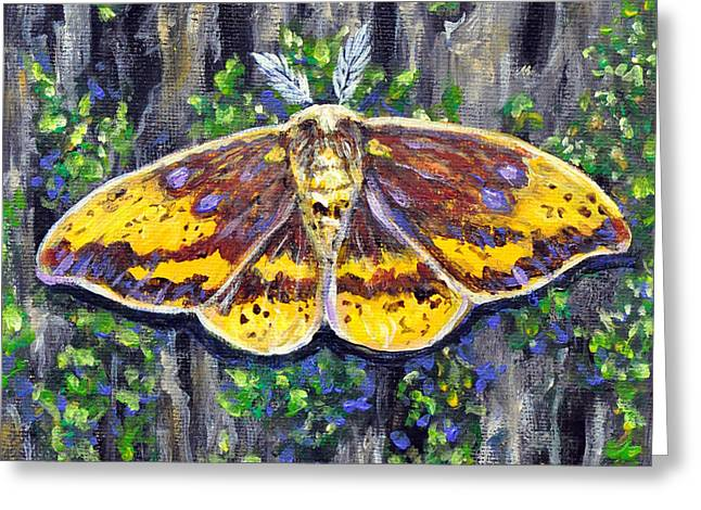 Imperial Moth Greeting Card by Gail Butler