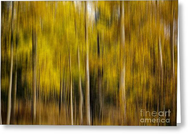 Impression Of Autumn Greeting Card by Elijah Knight
