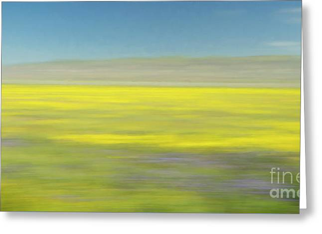 Greeting Card featuring the photograph Impression Of The Carrizo Plain by Brenda Tharp