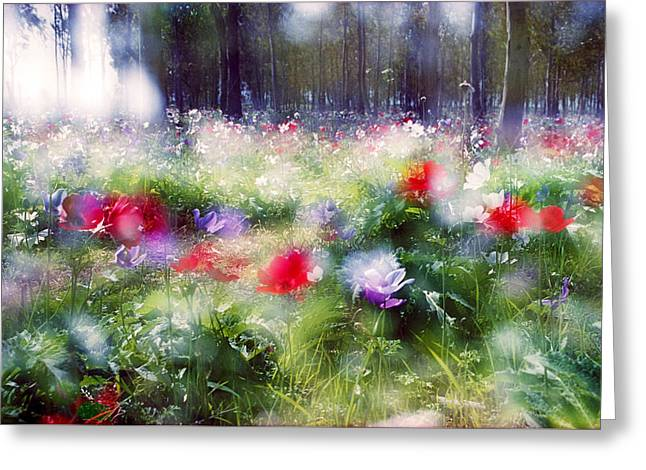 Impressionistic Photography At Meggido 2 Greeting Card