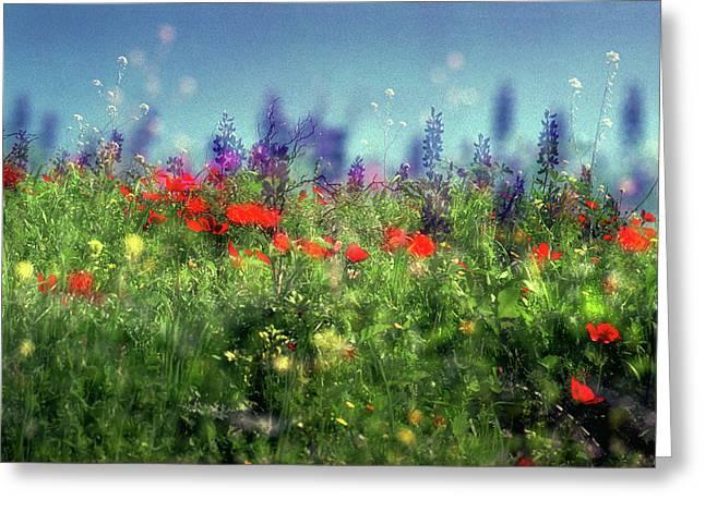 Impressionistic Springtime Greeting Card