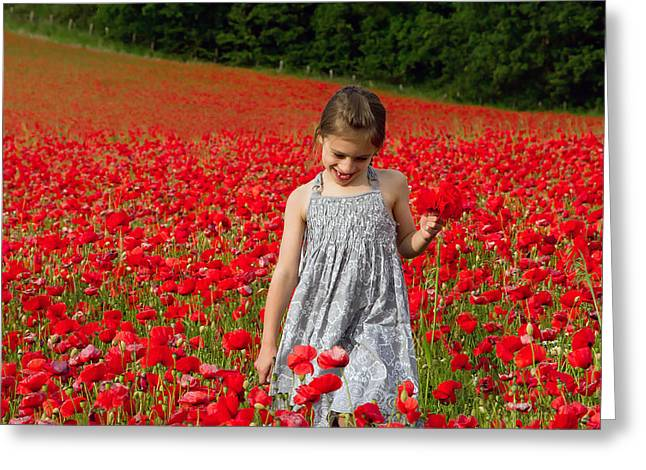 In A Sea Of Poppies Greeting Card