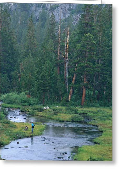 In All Creation - Little Lakes Valley Greeting Card