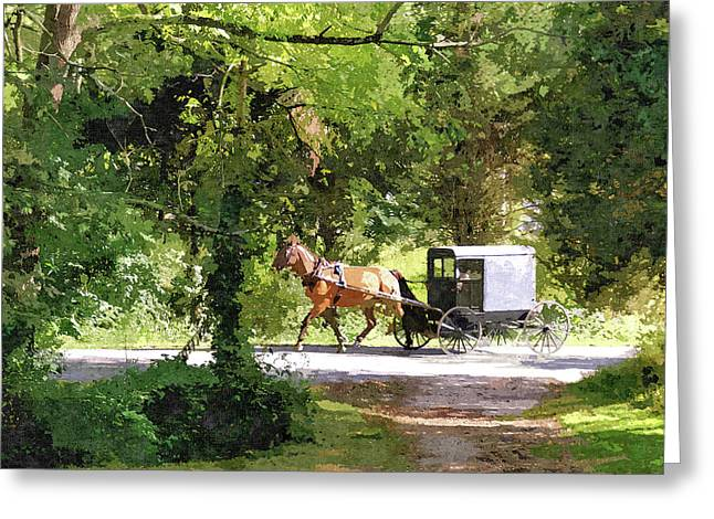 In Amish Country Greeting Card by John Trommer