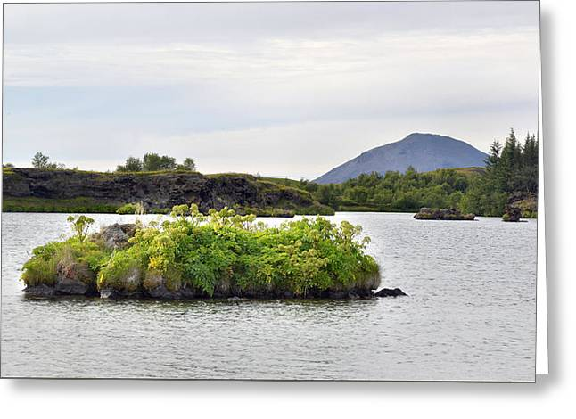 Greeting Card featuring the photograph In An Iceland Lake by Joe Bonita