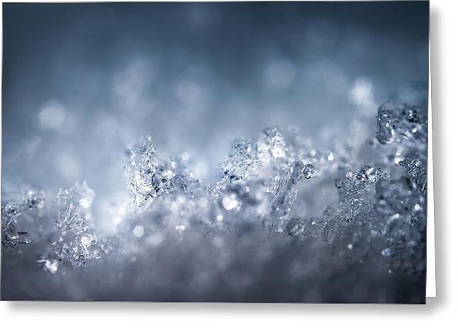 In An Icy World Greeting Card