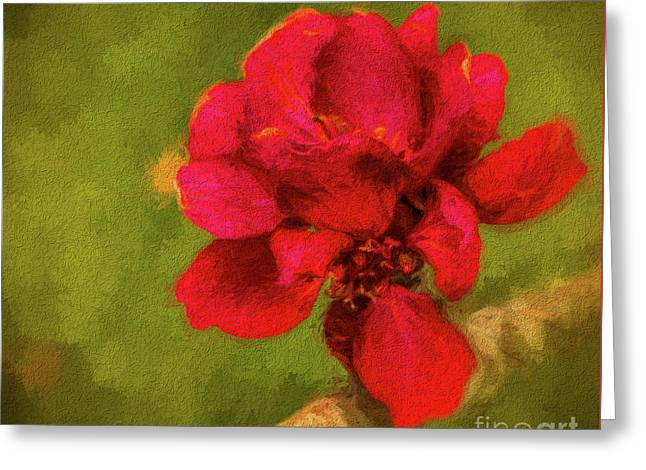 In Bloom Greeting Card by Dave Bosse