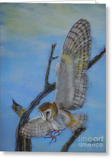 In Flight Barn Owl Greeting Card