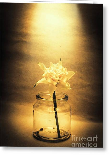 In Light Of Nostalgia Greeting Card by Jorgo Photography - Wall Art Gallery