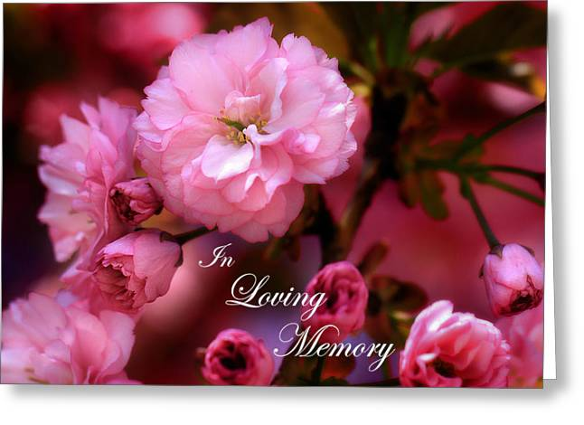 Greeting Card featuring the photograph In Loving Memory Spring Pink Cherry Blossoms by Shelley Neff