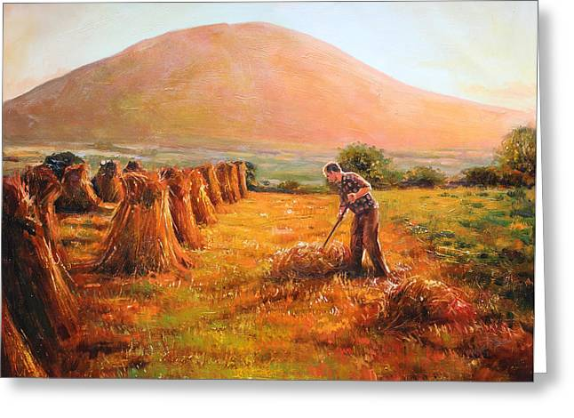 In Nephin's Shadow, Co. Mayo Greeting Card by Conor McGuire