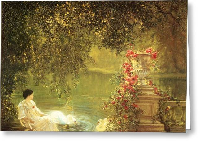 In Reverie Beside Swans Greeting Card by MotionAge Designs
