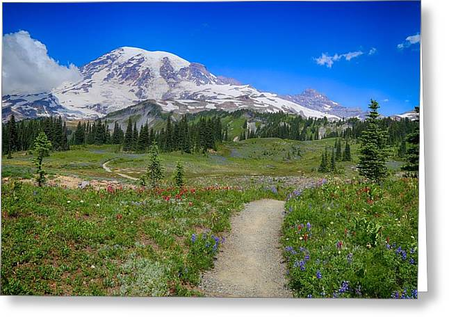 In Search Of Wildflowers Greeting Card