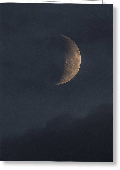 Greeting Card featuring the photograph In The Blue Hours by Alex Lapidus