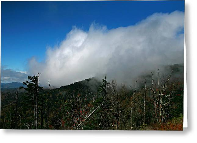 In The Clouds Greeting Card by James Jones