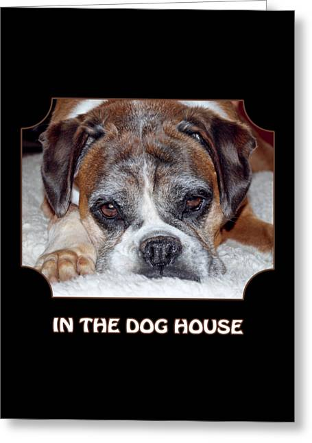 In The Dog House - Black Greeting Card by Gill Billington
