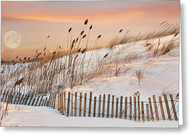 Greeting Card featuring the photograph In The Dunes by Robin-lee Vieira