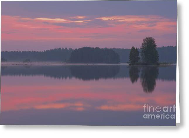 In The Early Morning Greeting Card by Veikko Suikkanen