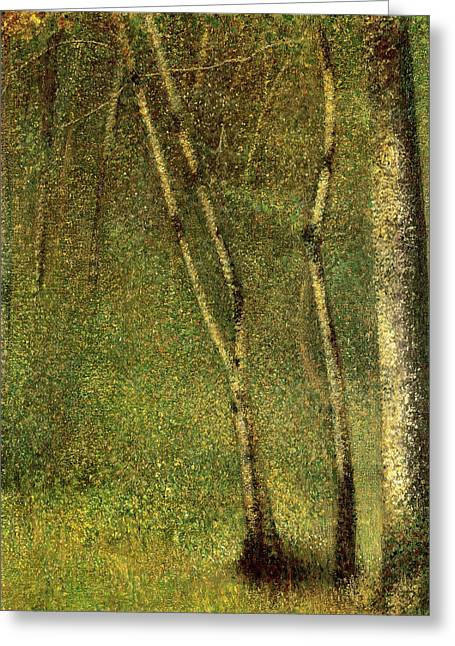Pointillist Greeting Cards - In the Forest at Pontaubert Greeting Card by Georges Pierre Seurat