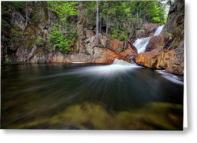 In The Gorge At Smalls Falls Greeting Card