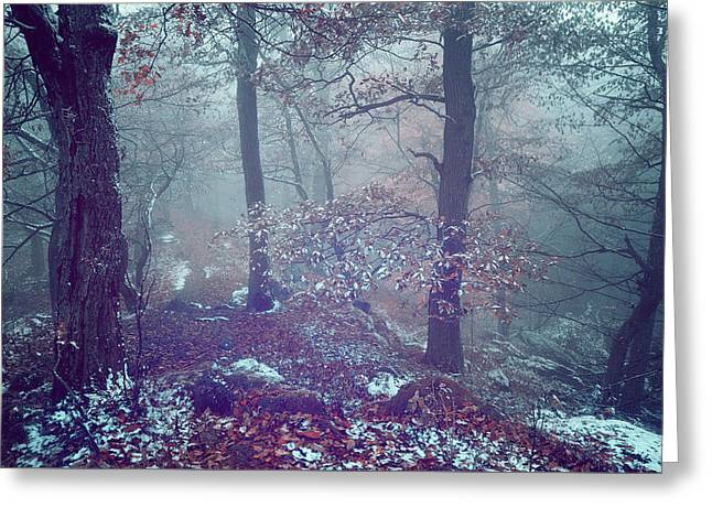 In The Heart Of Blue Woods Greeting Card by Jenny Rainbow