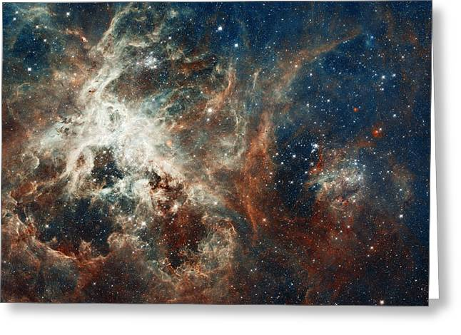 In The Heart Of The Tarantula Nebula Greeting Card by Mark Kiver