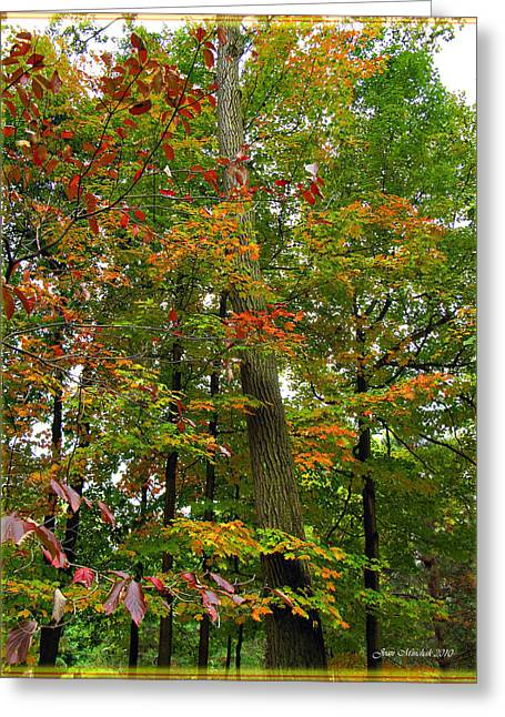 Greeting Card featuring the photograph In The Height Of Autumn by Joan  Minchak