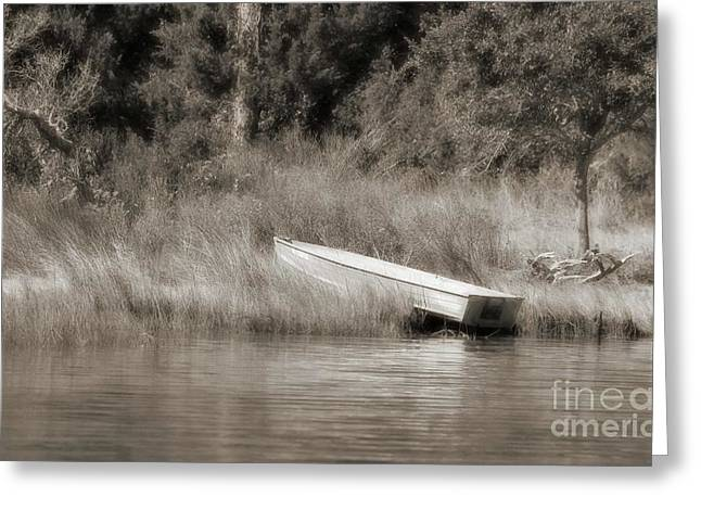 In The Marsh Greeting Card by Benanne Stiens
