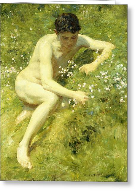 Coy Greeting Cards - In the Meadow Greeting Card by Henry Scott Tuke