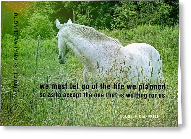 In The Meadow Quote Greeting Card by JAMART Photography