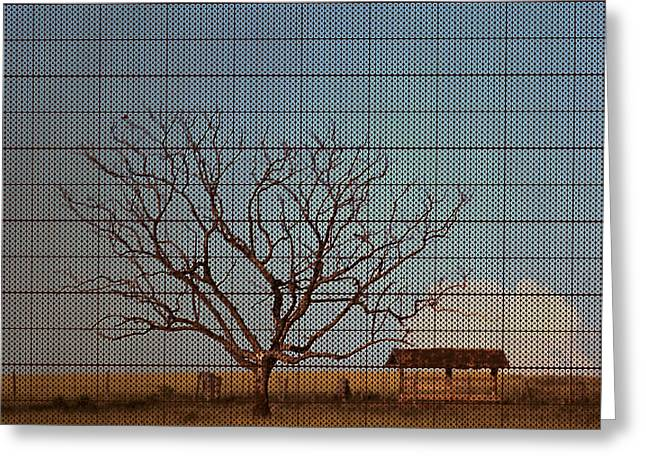 In The Middle Of Nowhere Greeting Card by Andre Orms