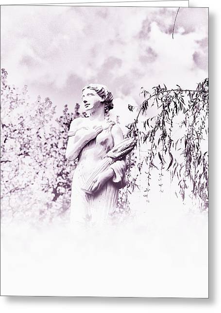 In The Mist Greeting Card by Bill Cannon