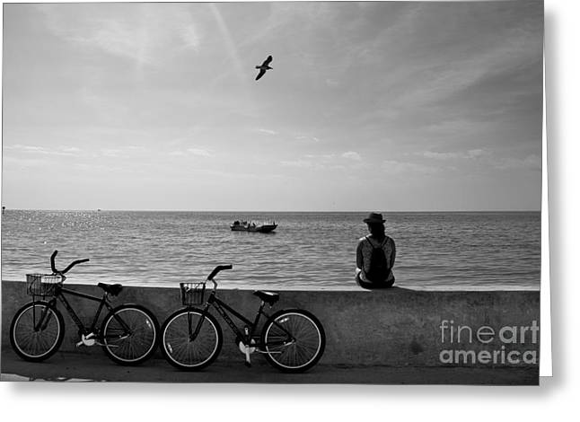 In The Moment Greeting Card by Ray Medina