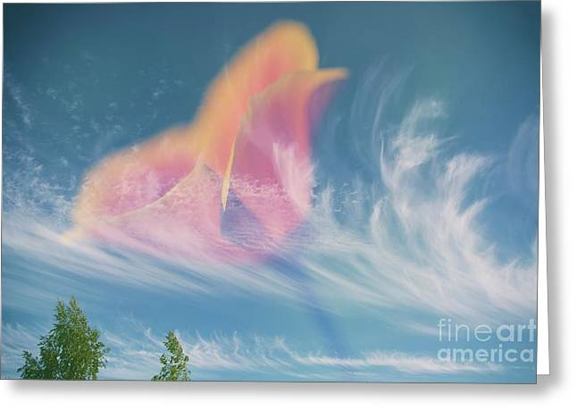 In The Sky Greeting Card