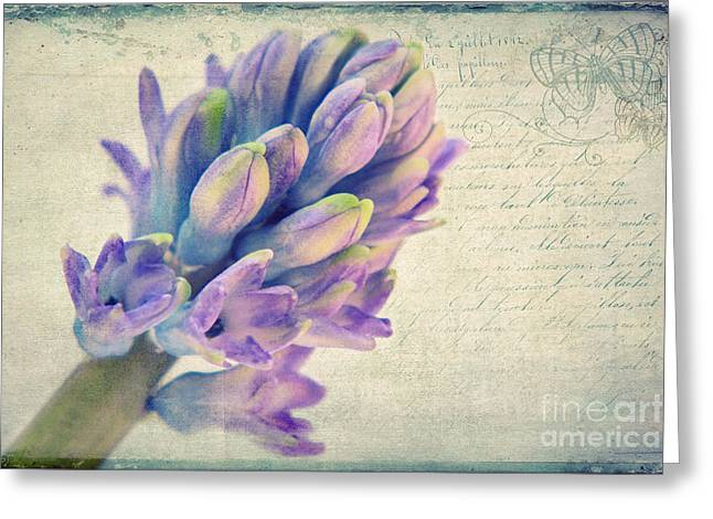 In The Spring Greeting Card by Angela Doelling AD DESIGN Photo and PhotoArt