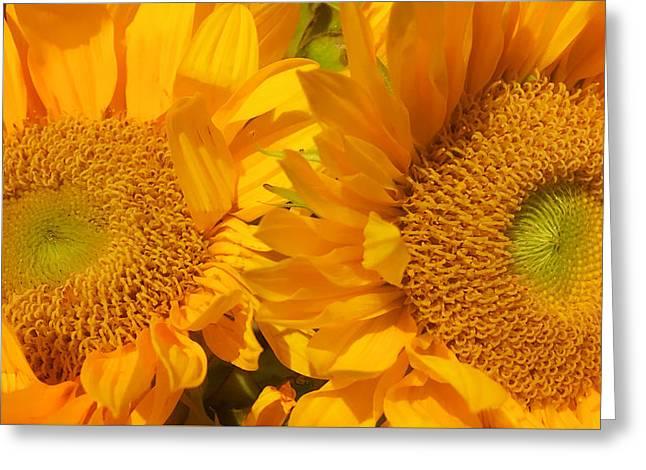In The Sun Greeting Card