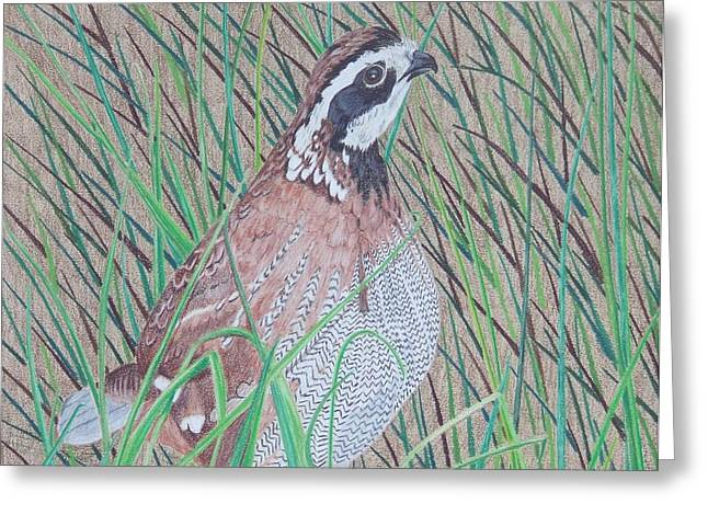 In The Tall Grass Greeting Card by Anita Putman