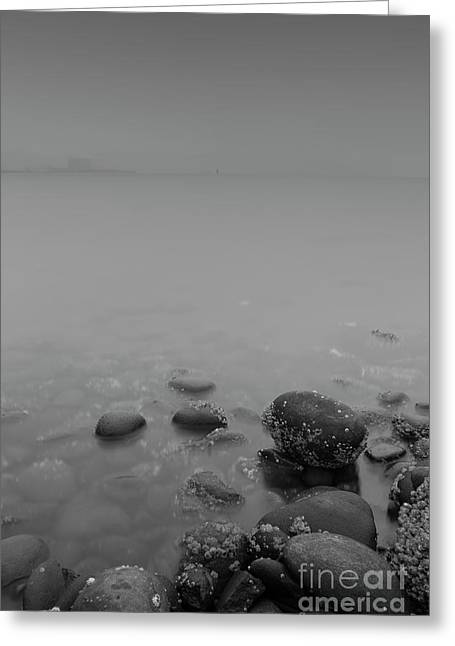 In The Thick Fog Greeting Card