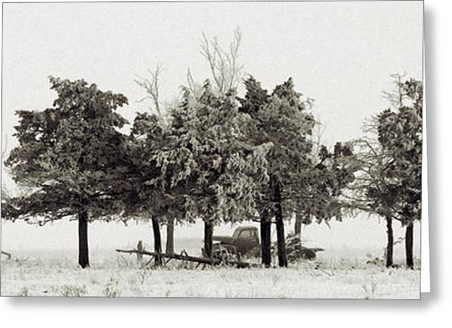 Greeting Card featuring the photograph In The Tree Line by Don Durfee