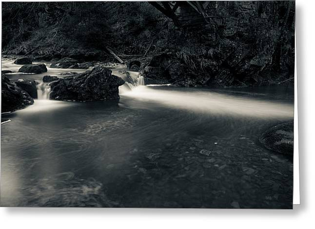 in the valley of Oker, Harz Greeting Card by Andreas Levi