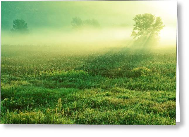 In The Valley Of The Autumn Mist Greeting Card by Todd Klassy