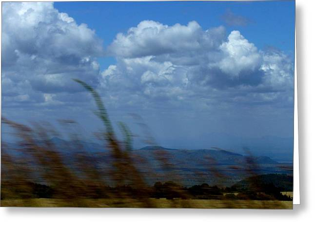 In The Wind Greeting Card by Carole Guillen