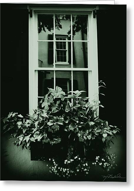 In The Window Greeting Card by Melissa Wyatt