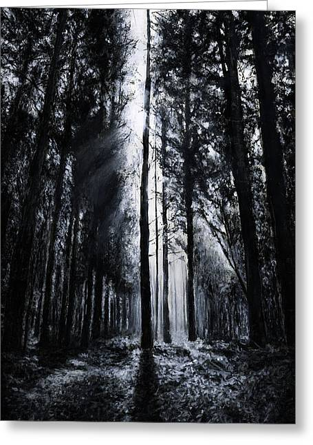 In The Woods 5 Greeting Card