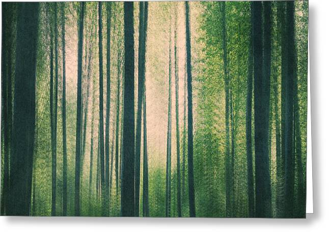 In The Woods Square Greeting Card by Violet Gray