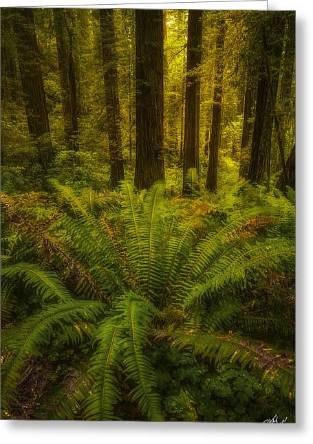 In Unison Greeting Card by Peter Coskun