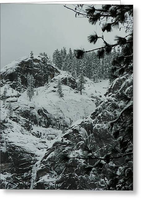Yosemite Greeting Cards - In Winter Greeting Card by Sue Gardiner