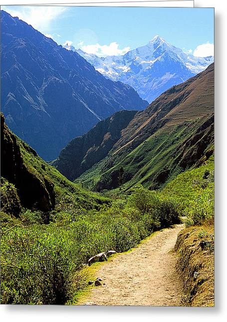 Inca Trail And Mt. Veronica Greeting Card by Alan Lenk